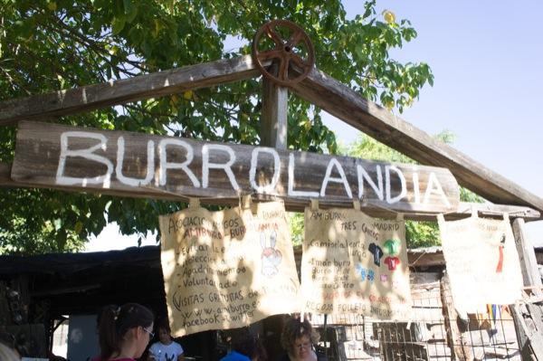 burrolandia-mammaproof-madrid-niños