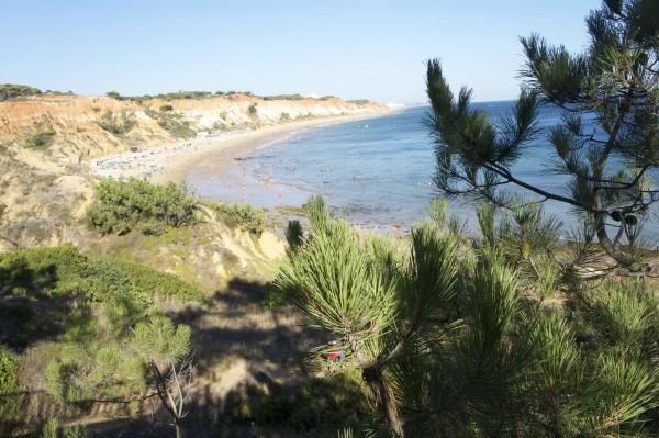 Playa Albufeira Algarve Portugal