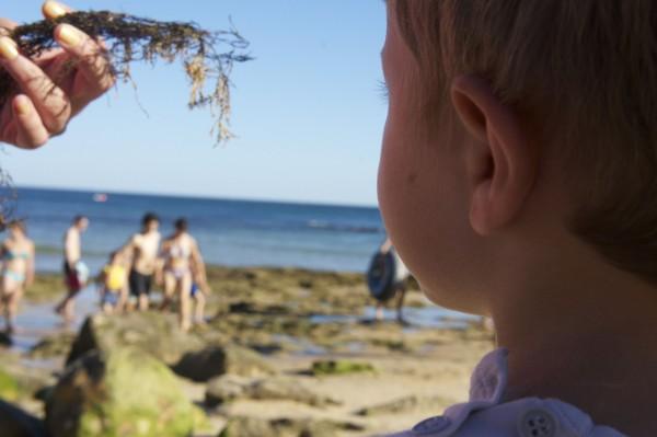 Playa Albufeira Algarve Portugal (4)