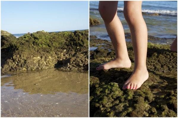 Playa Albufeira Algarve Portugal (10)