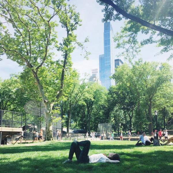 Viajar a Nueva York - Picnic en Central Park