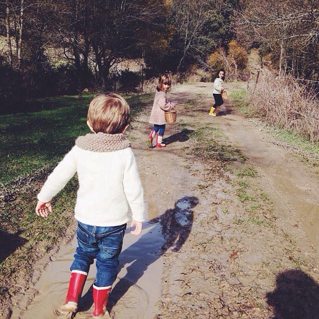 Saltar charcos ✅ descubrir el precioso entorno de @cutamilla ✅ hacer un picnic exquisito con @maracatering en el monte junto a un río ✅ recoger setas ✅ hacer adornos navideños con la gran @sallyhambleton ✅disfrutar de una carne como las de antes y lo más importante: pasar un día en compañía de gente estupenda y sus familias @elsofaamarillo_ @conbotasdeagua @eva_colorin @savethedateprojects @luciamphoto @sallyhambleton @unpocodecanela @masquepajaros ✅ @maracatering, un PLANAZO con mayúsculas, muchísimas gracias por todo, ha sido genial!! 👏🙌 #cutamilla #elplanazo